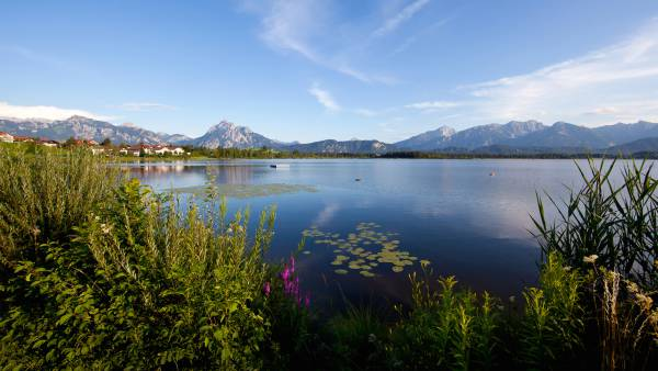Biohotels in the Allgäu