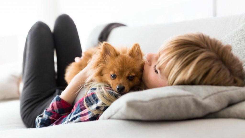 Urlaub mit hund im hotel for Hotel auf juist mit hund