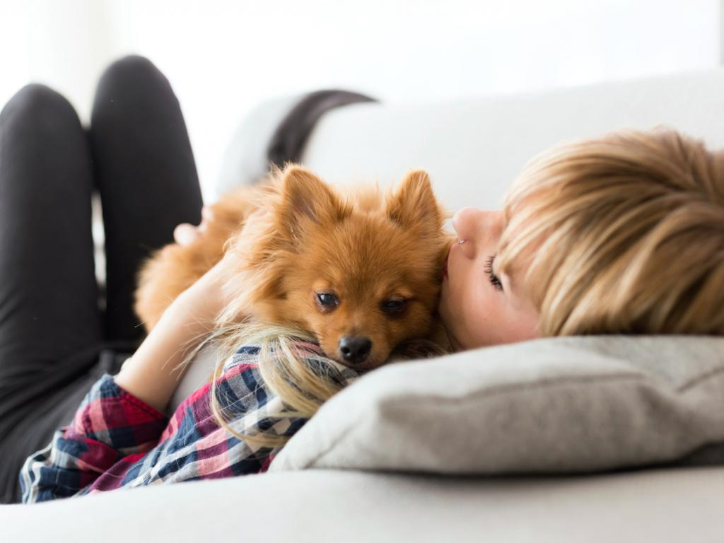 Urlaub Mit Hund Im Hotel Www Biohotels Info